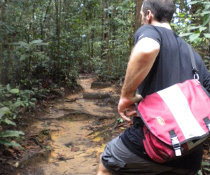 Seeking Nature in Singapore