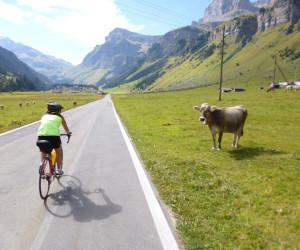 Biking Touring the Alps | Switzerland